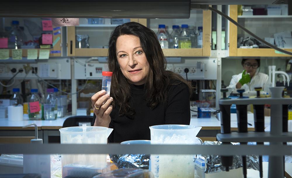Sophia Hober, professor i molekylär bioteknik. Foto: Johan Marklund