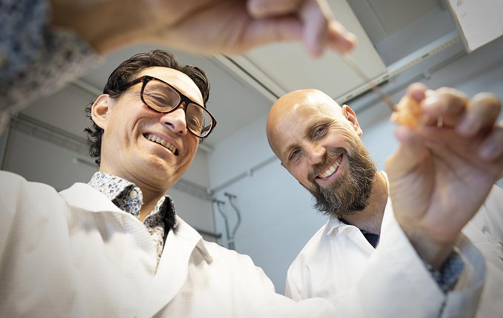 Michael Palmer, forskare och Håkan Engqvist, professor i tillämpad materialvetenskap vid Uppsala universitet. Foto: Mikael Wallerstedt